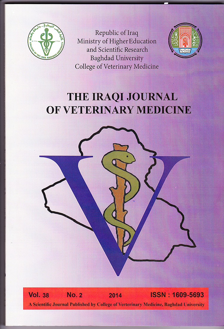 Archives | The Iraqi Journal of Veterinary Medicine (ISSN-P